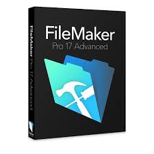 FileMaker Product Download Icon