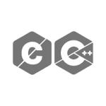 C C++