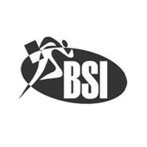 BSI Logo - High Power Data Solutions Success Stories